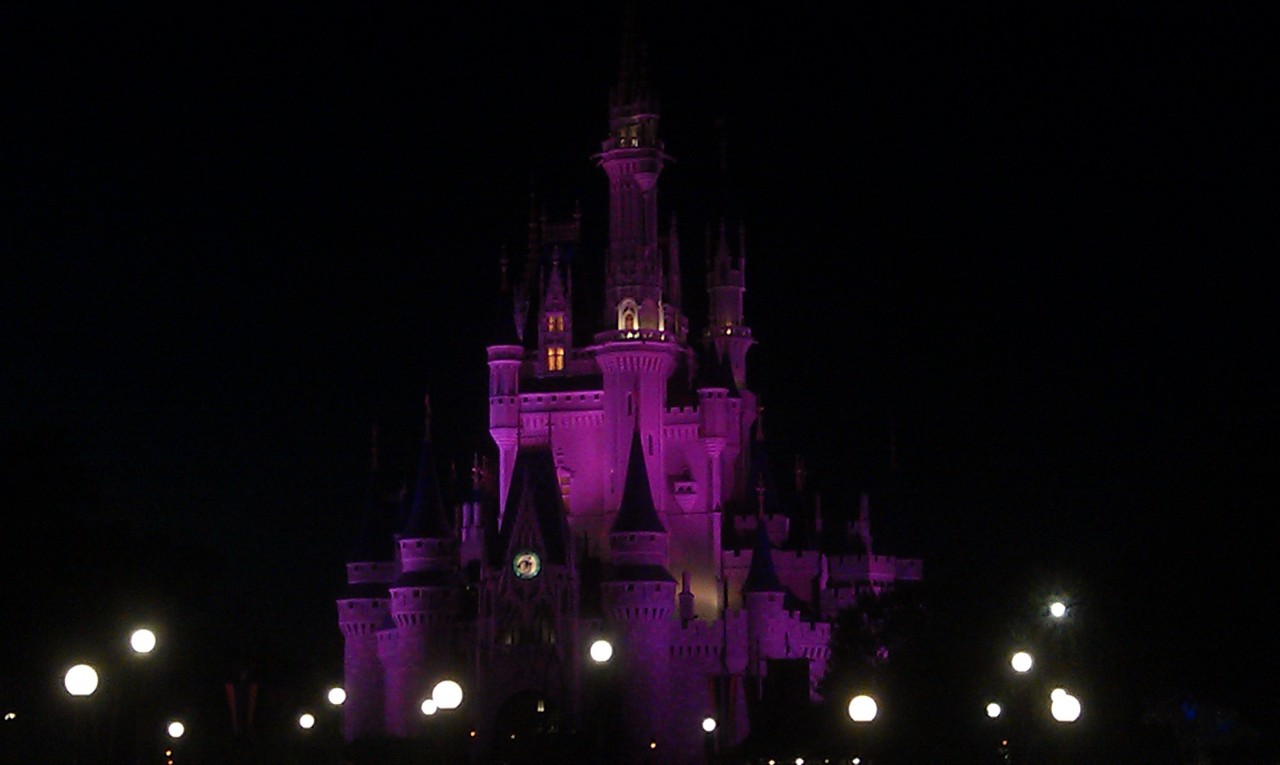 A random Cinderella Castle picture as I walked by.