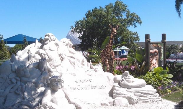 A sand sculpture for Chimpanzee