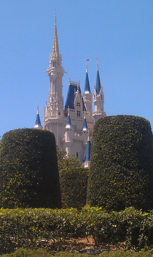 A slighty different picture of Cinderella Castle.