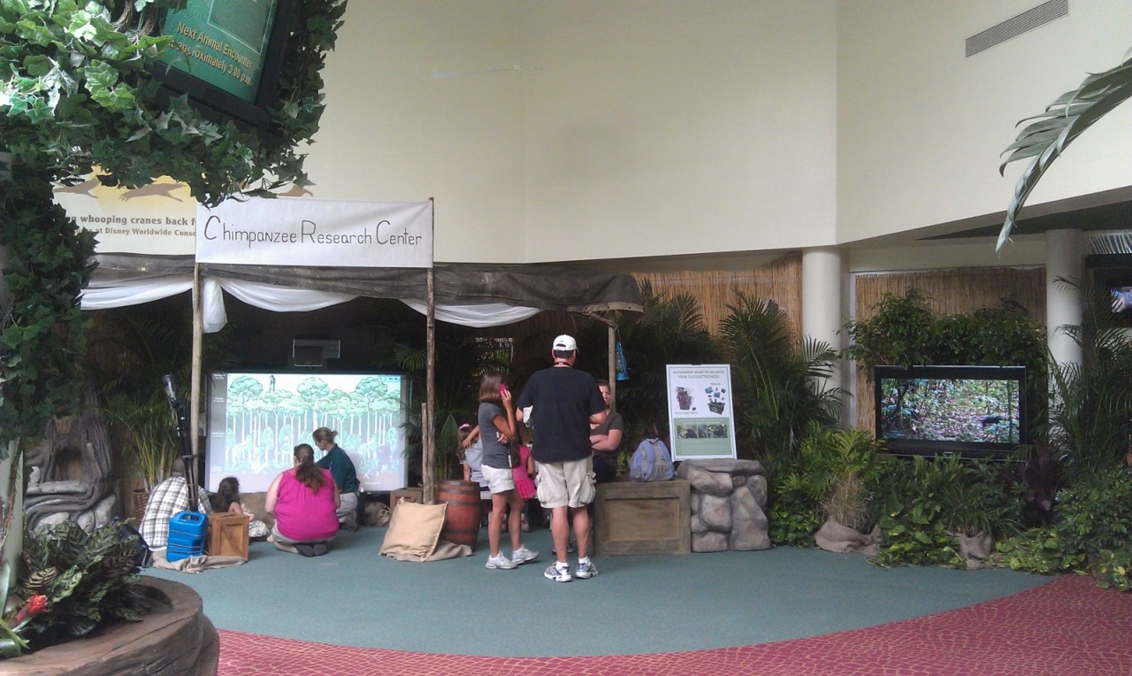 Conservation Station has an area set up to promote Chimpanzee and another for earth day