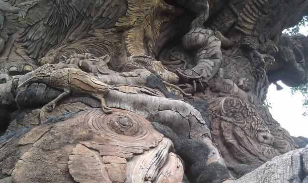 I always enjoy walking around the Tree of Life.