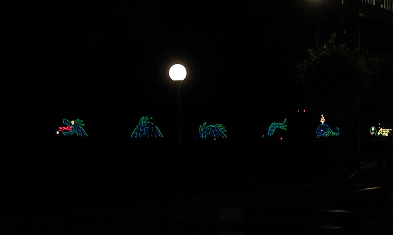 While waiting for the bus the electrical water parade was going by.