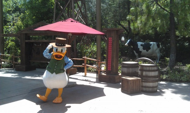 Donald at the Big Thunder Ranch Jamboree in Disneyland