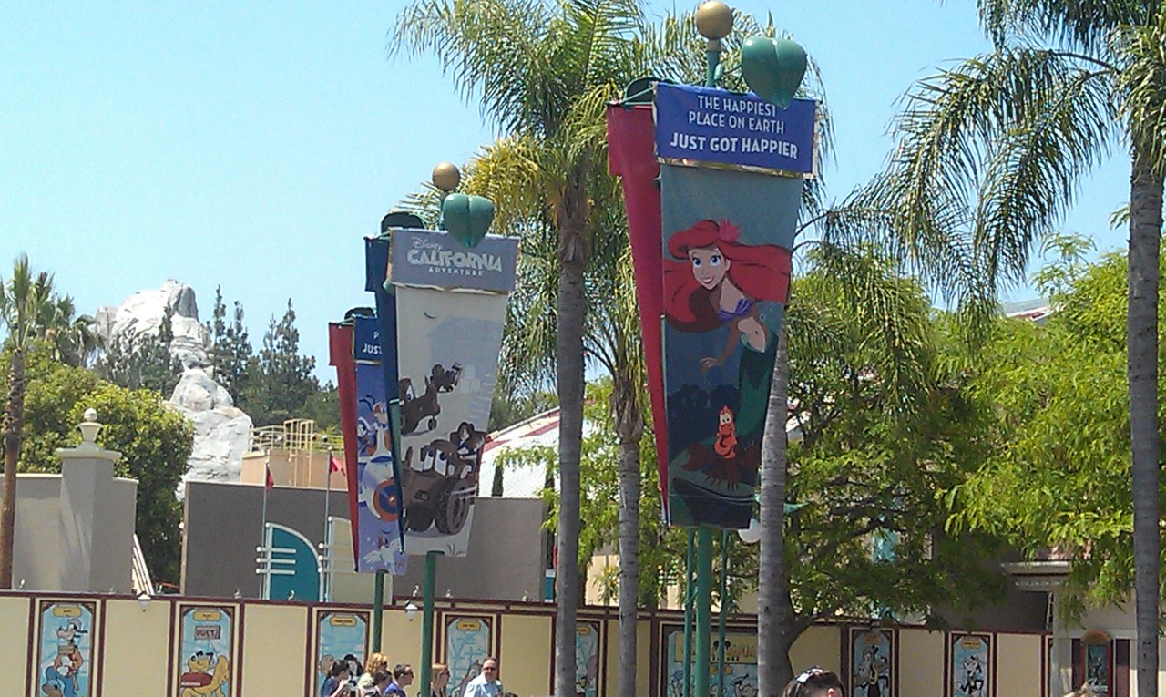 Another picture of the banners.