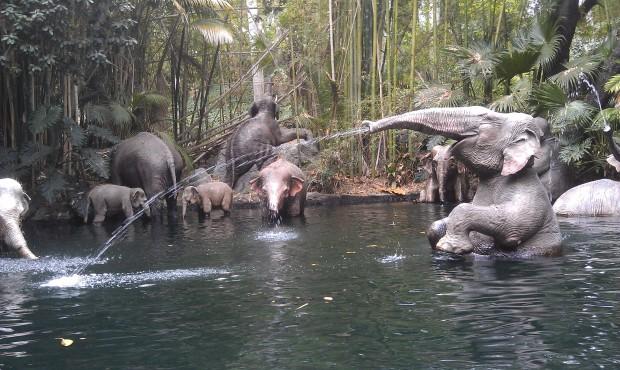 Jungle Cruise elephant bathing pool
