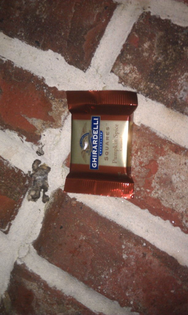 The Ghirardelli chocolate this evening pumpkin spice carmel