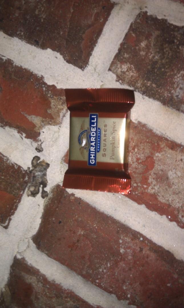 The Ghirardelli chocolate this evening pumpkin spice carmel