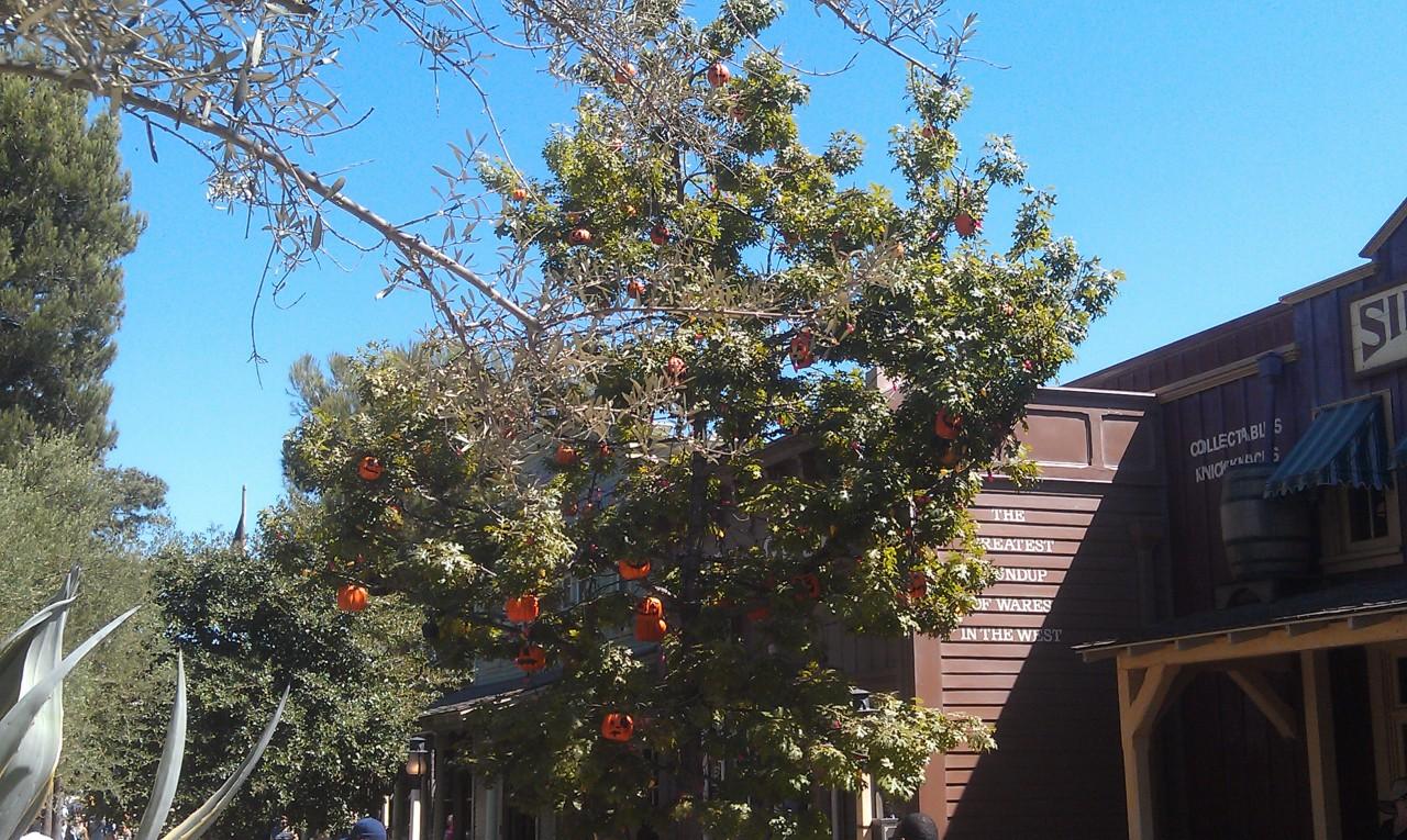 The Halloween Tree in Frontierland