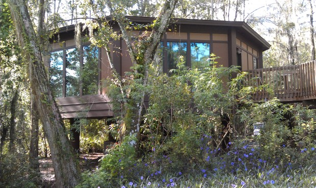 A treehouse villa next to the 17th tee