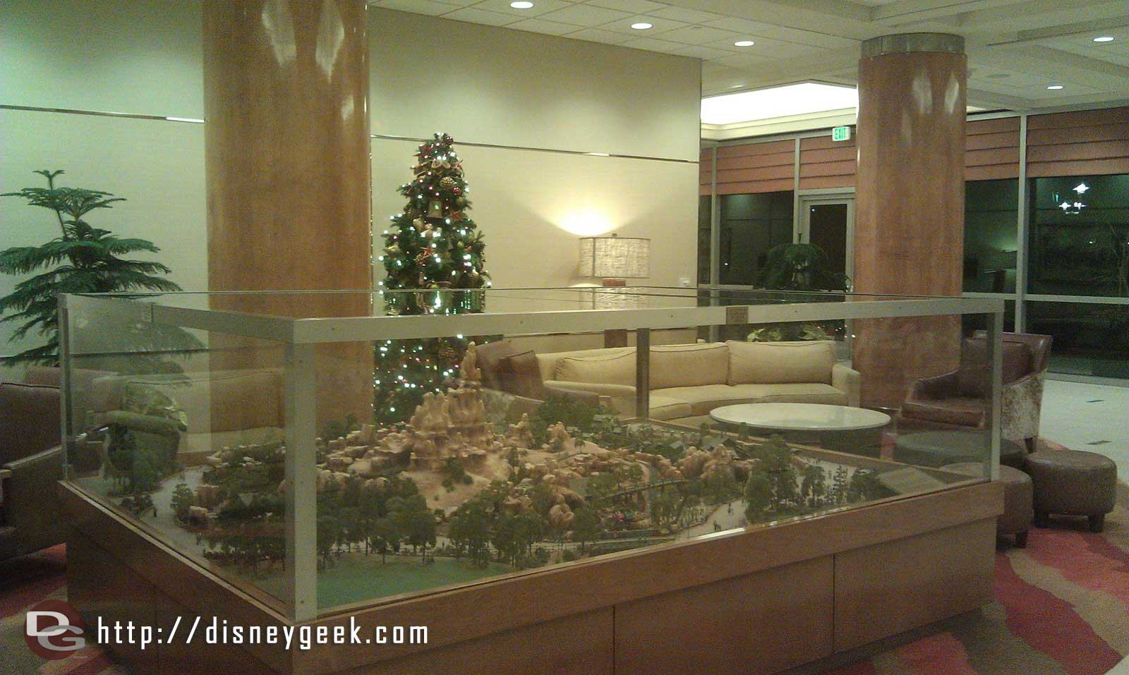 A small tree in the Frontier Tower of the Disneyland Hotel
