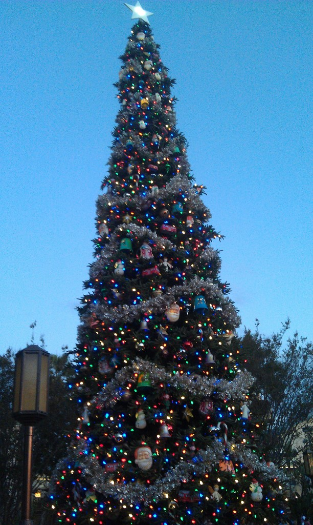 The Buena Vista Street tree
