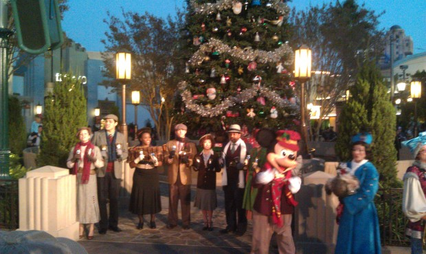 The Buena Vista Street tree lighting