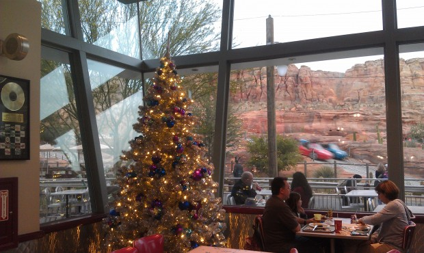 There are several trees in Flos.  Here is one in the dining room that looks out to the Racers