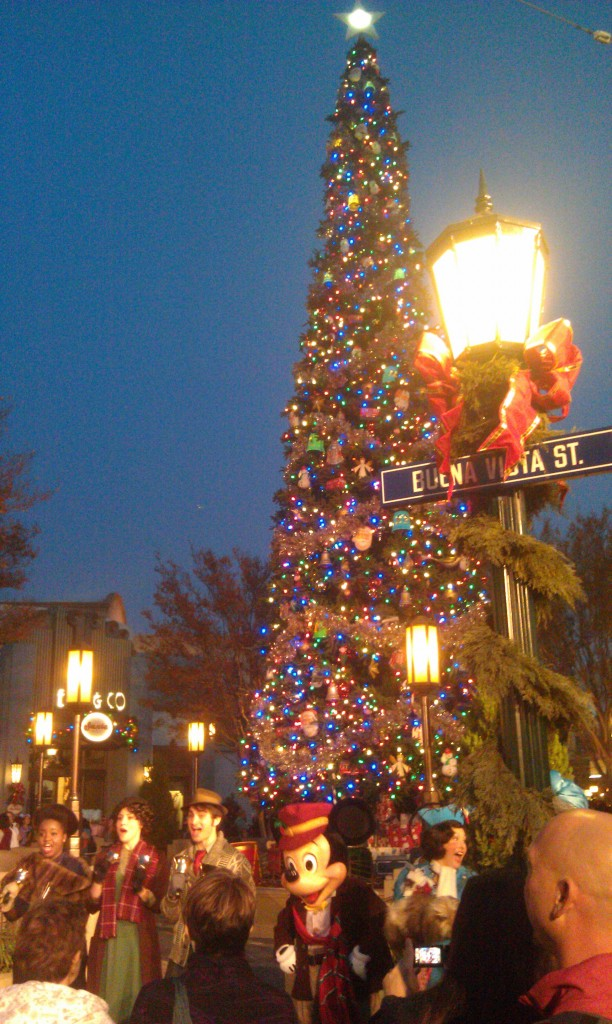 The tree lighting on #BuenaVistaStreet