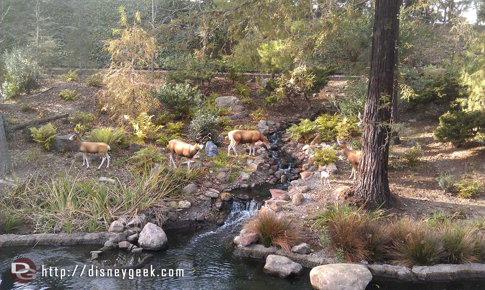"""Some wild """"life"""" along the Rivers of America as I sail by on the Columbia"""