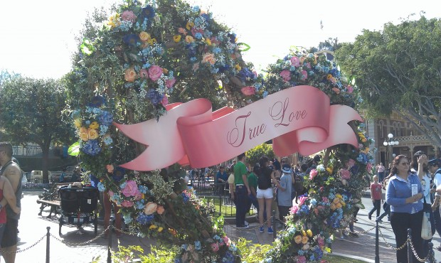 True Love Week is going on with photo ops on Main Street #LimitedTimeMagic