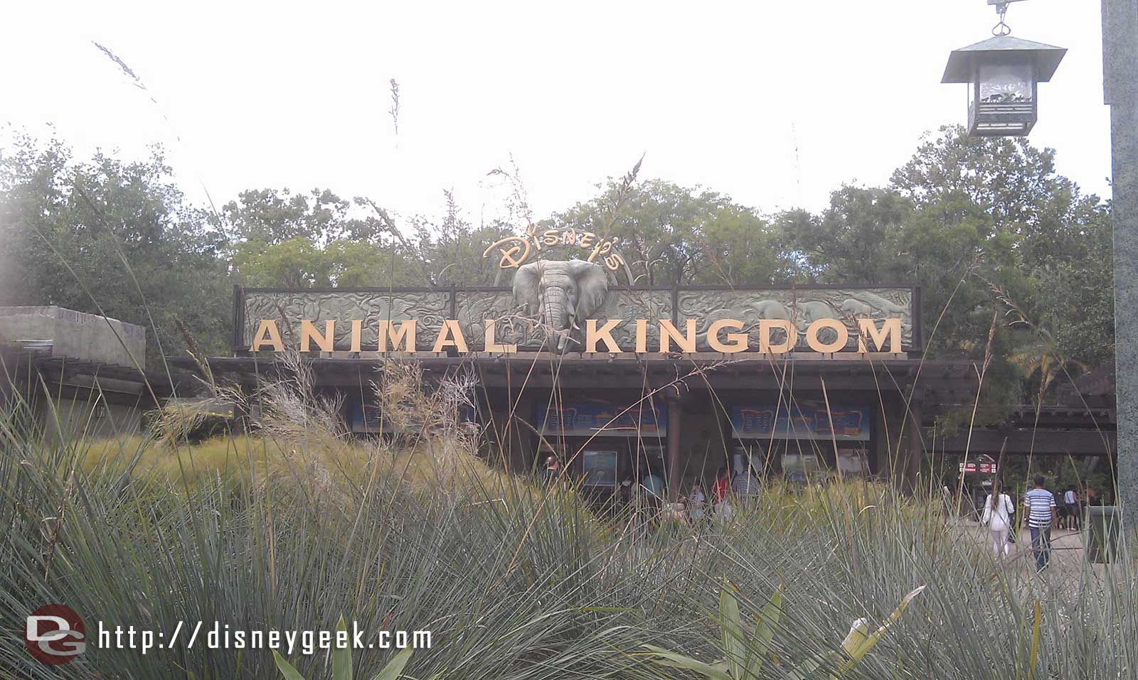 Arriving at Disney's Animal Kingdom for the afternoon.