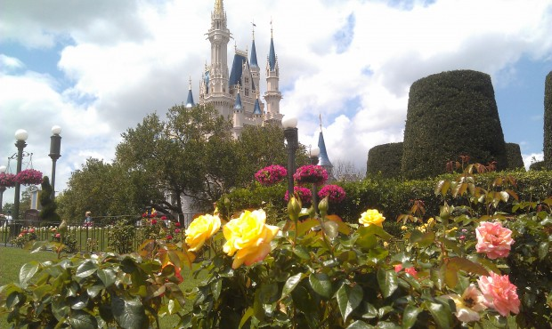 Cinderella Castle from the rose walk
