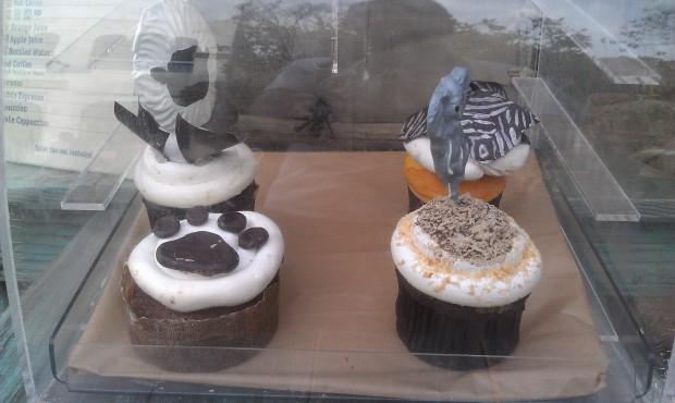 Cupcakes at Kusafiri