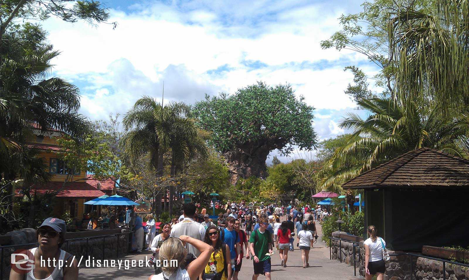 Heading out, one more look back into the park #DAK15