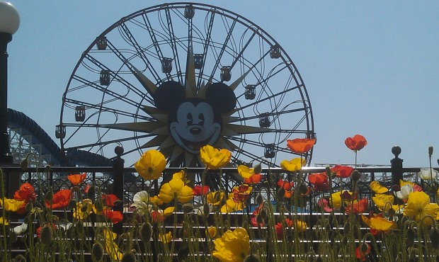 Mickeys Fun Wheel on this nice spring afternoon