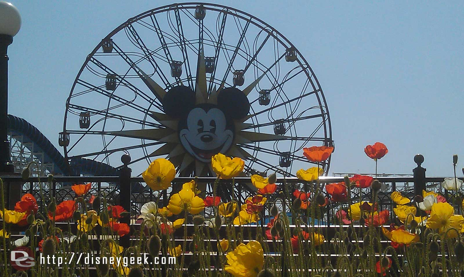 Mickeys Fun Wheel on this nice spring afternoon
