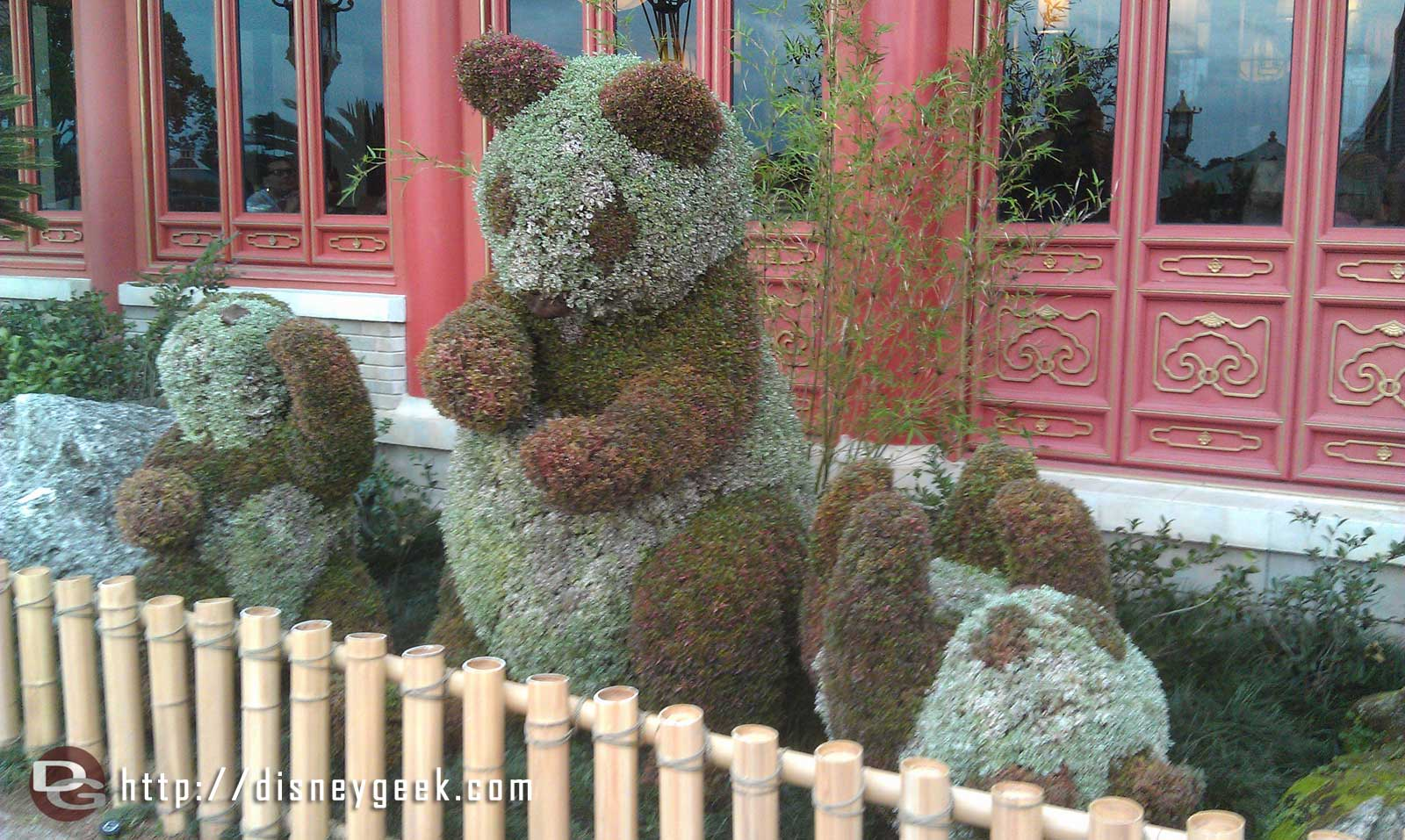 Pandas in front of China