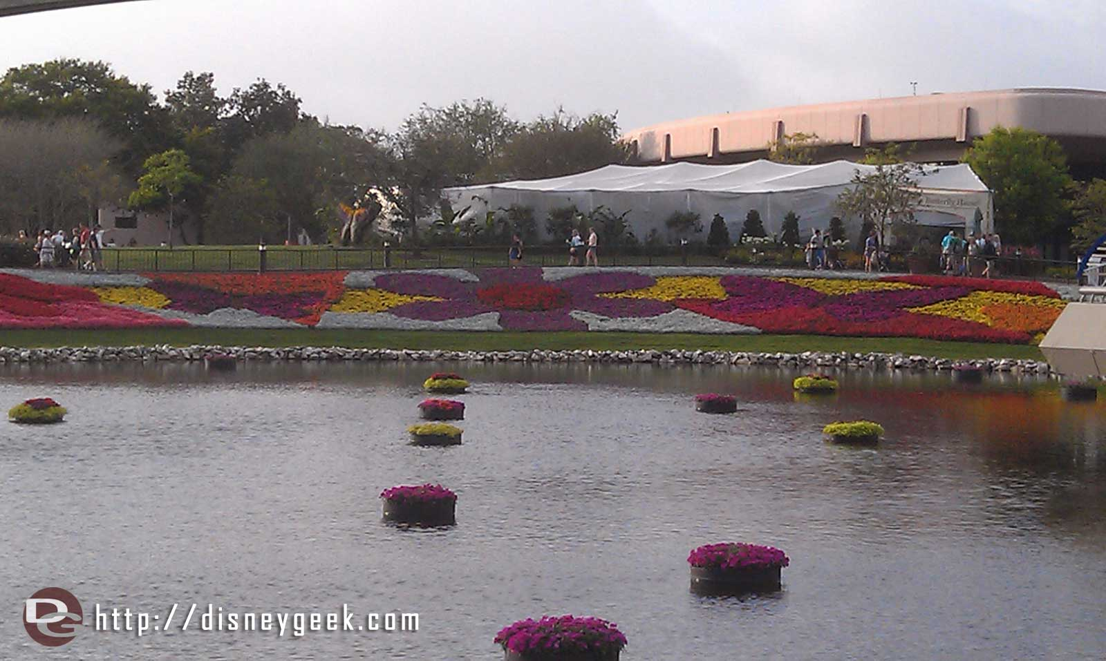 The Epcot flowerbeds from ground level