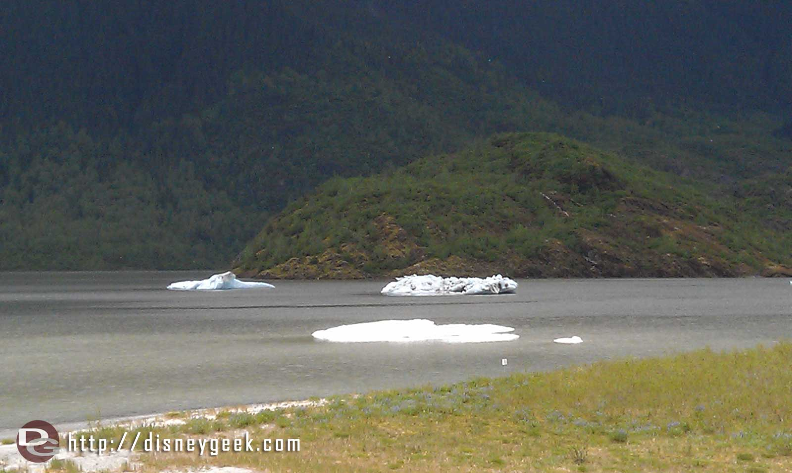 Ice floating near Mendenhall Glacier #Alaska