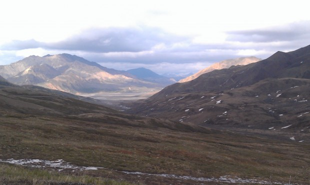 Once I get home will post wildlife pics, we saw bears, moose, sheep & wolverine #Alaska here is a landscape pic