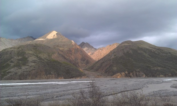 Spent most of today on buses.  First to Denali then an 8 hr excursion into the park.
