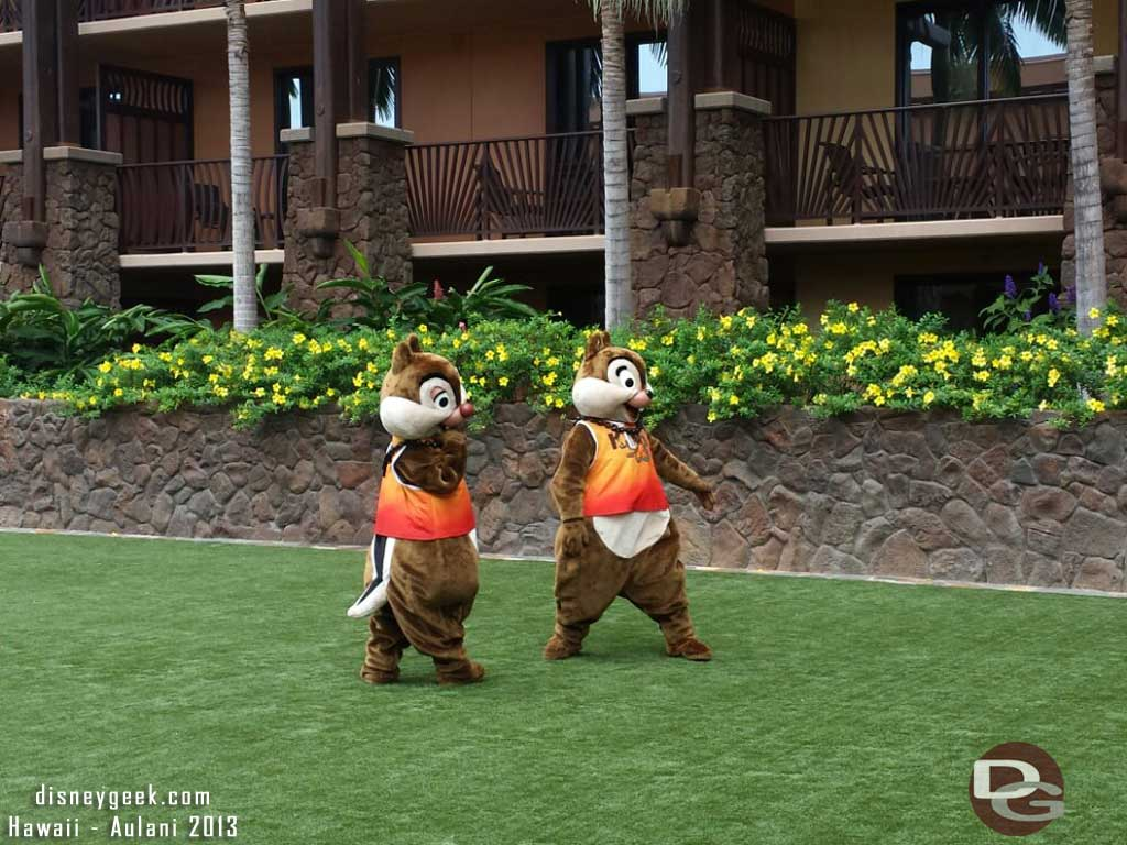 Chip and Dale on the Kipuka lawn #Aulani
