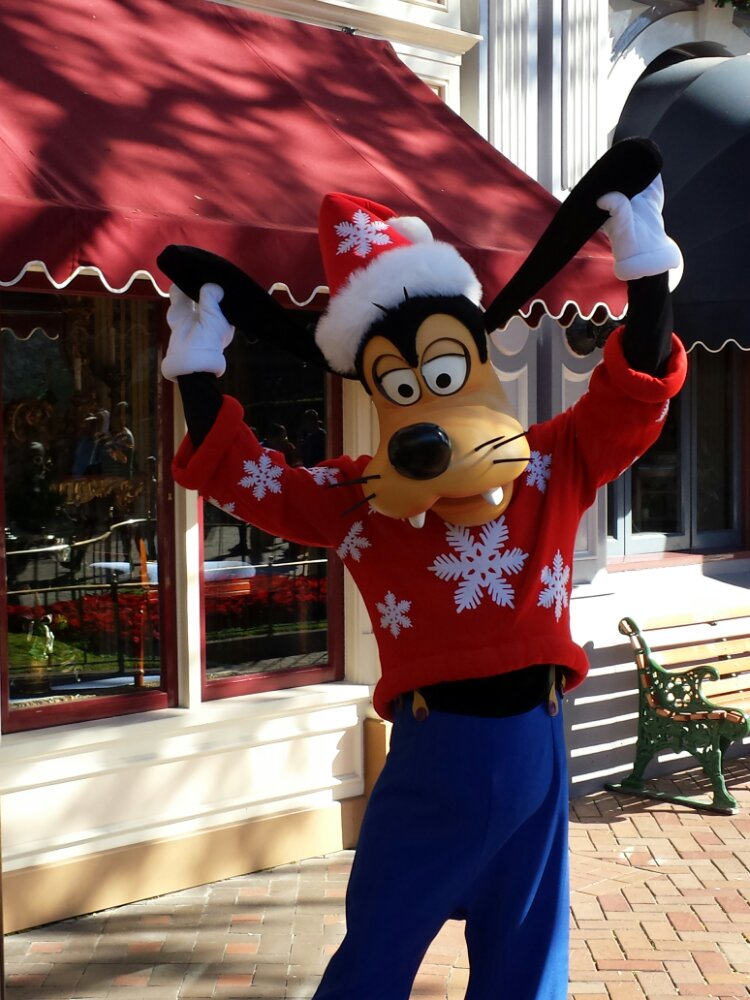 Goofy on Main Street with his winter sweater