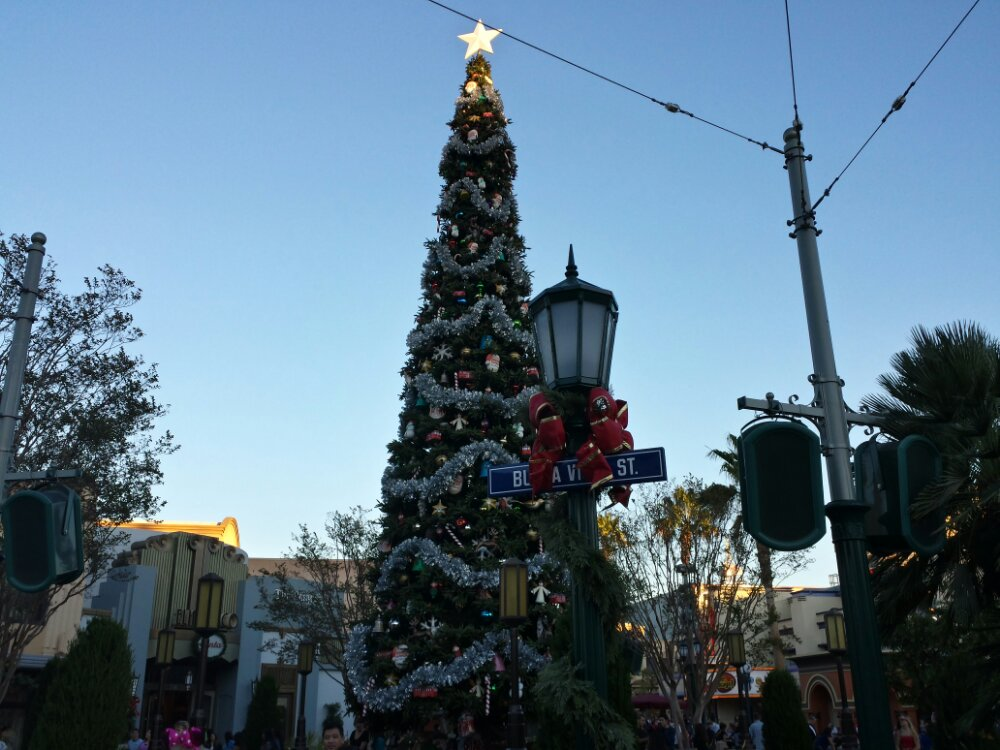 #BuenaVistaStreet has its tree up