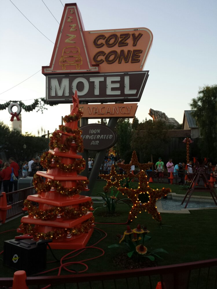The Cozy Cone Tree