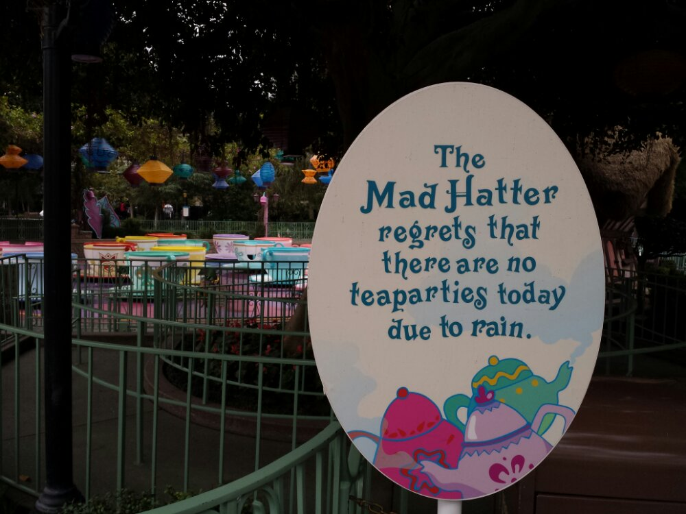 The Mad Tea Party is closed due to the rain today