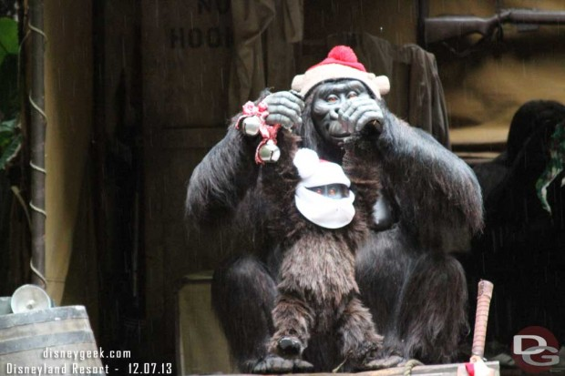 Jingle Cruise - Gorillas dressed up for the season