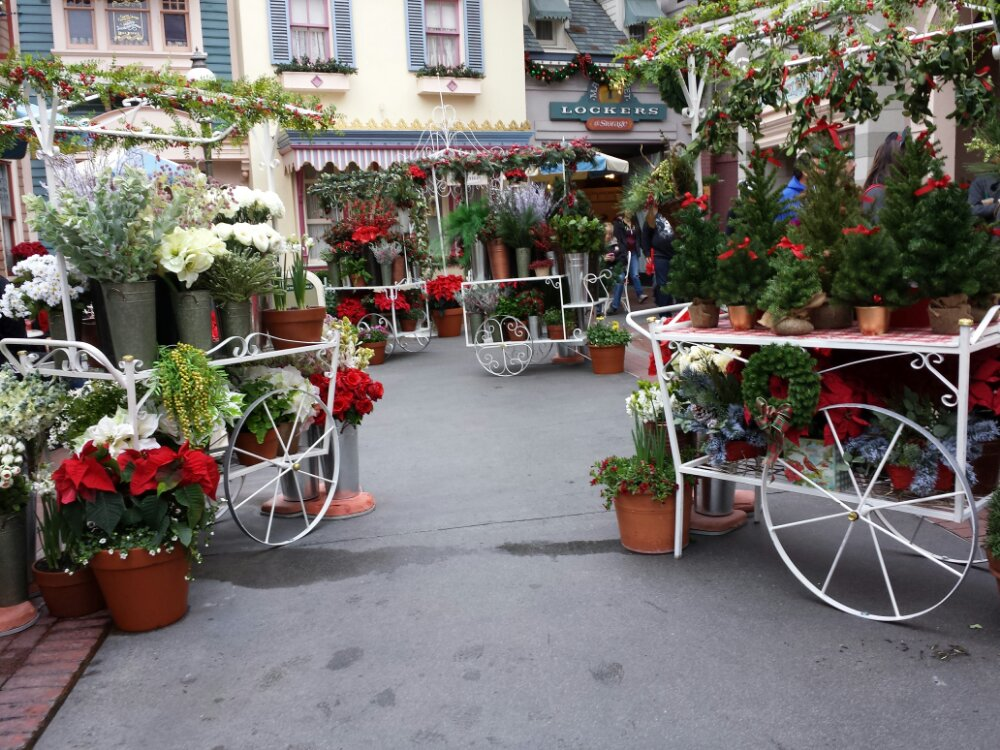 A Flower Market has taken over center street