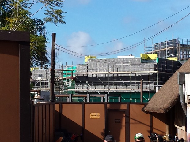Animal Kingdom - New Festival of the Lion King Theater Construction