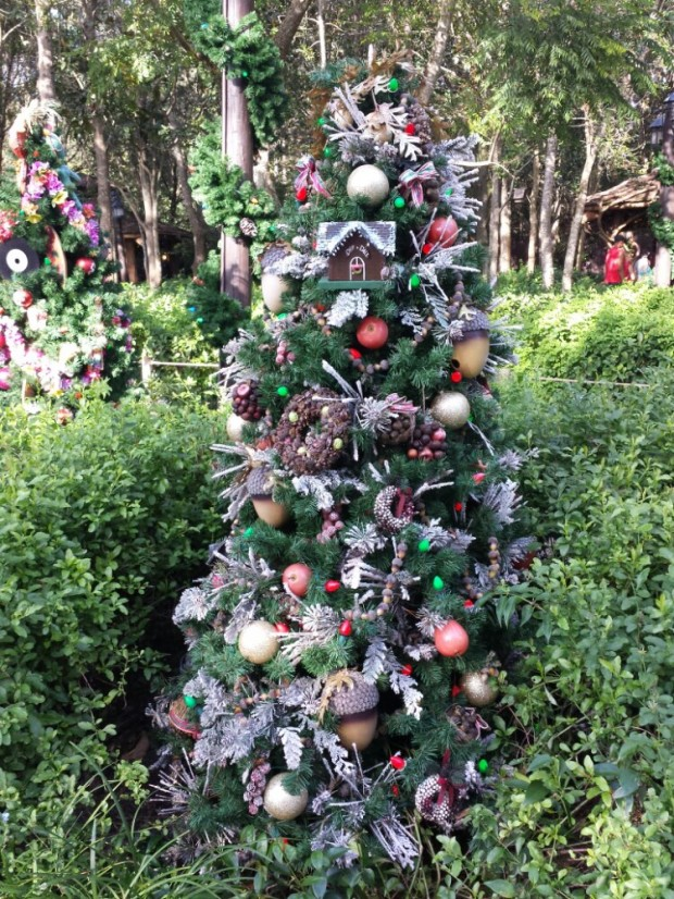 Camp Minnie Mickey - Chip and Dale's Tree