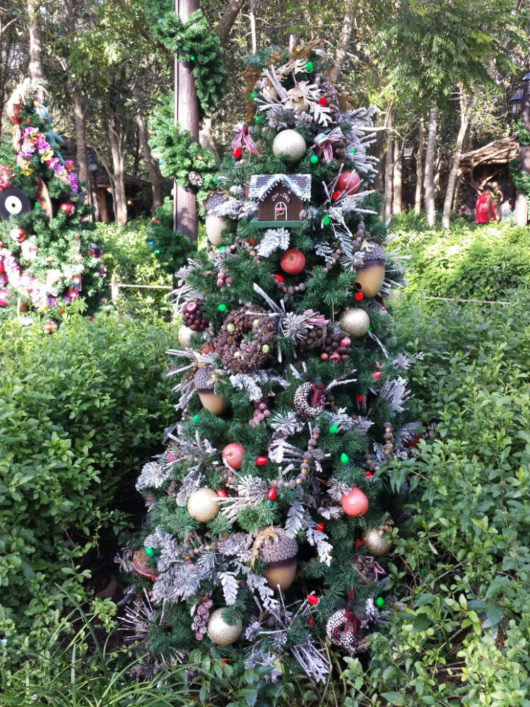 Chip and Dale's Christmas Tree in Camp Minnie Mickey