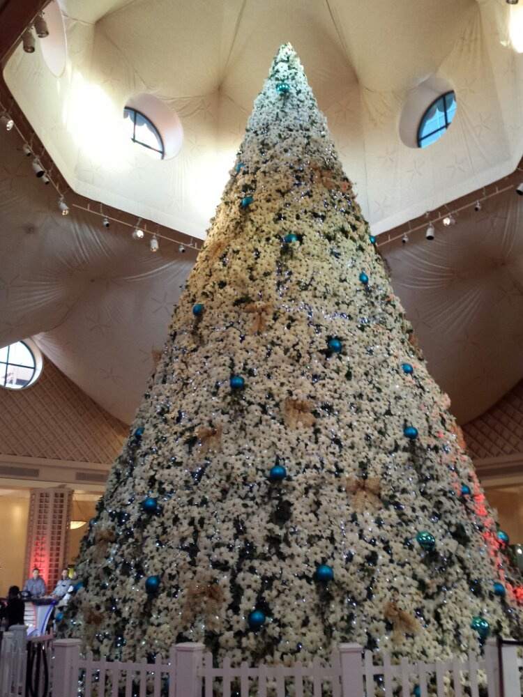 The Christmas tree in the Dolphin lobby