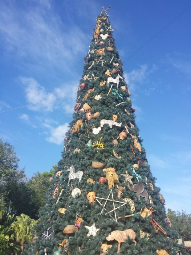 Disney's Animal Kingdom - Christmas Tree at the front entrance