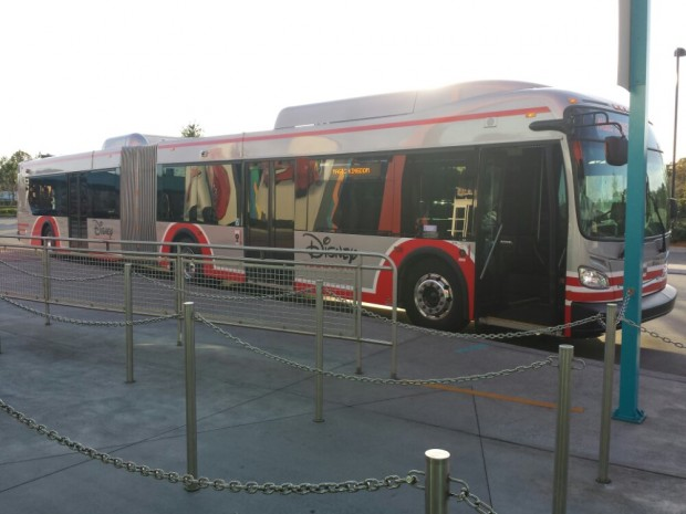 One of the new articulated Disney Transport buses