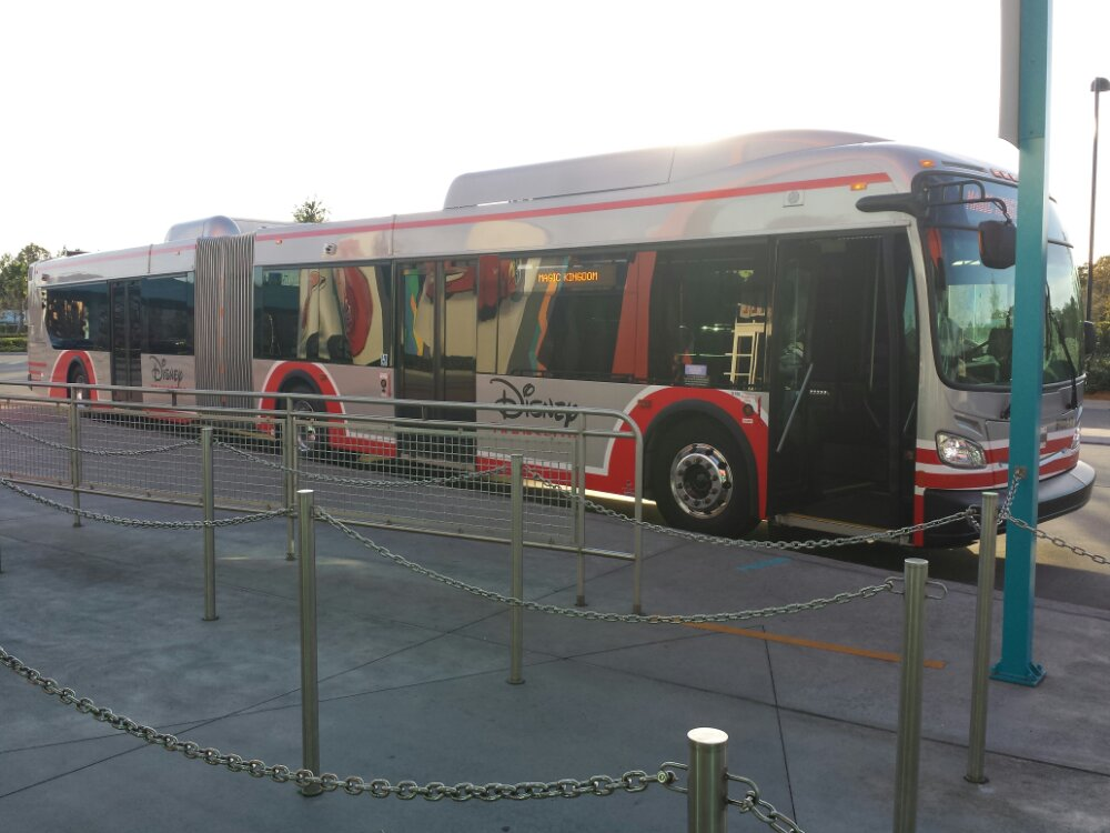The new larger buses on the Magic Kingdom route for Art of Animation and Pop Century