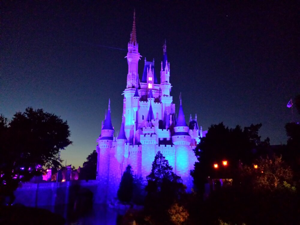 Cinderella Castle this evening, the lights come on in a few minutes