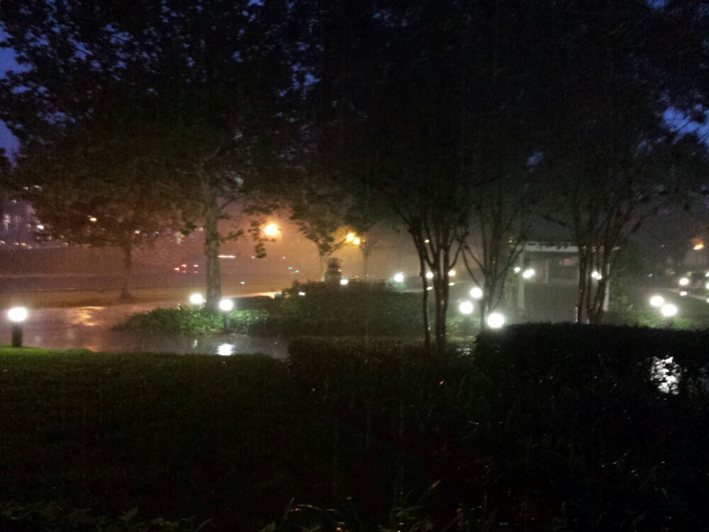 Was about to head to Epcot for dinner then I looked outside..