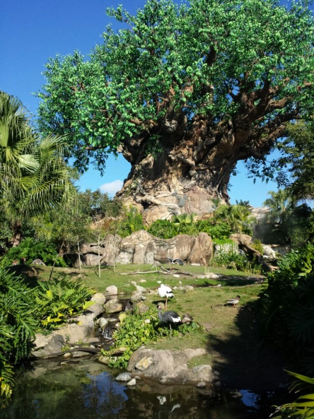 Disney's Animal Kingdom Tree of Life Garden