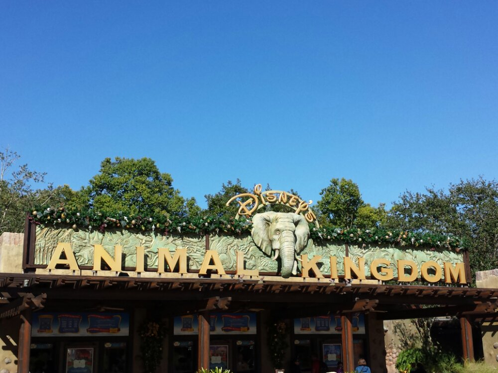 The Animal Kingdom entrance sign decorated for the holidays