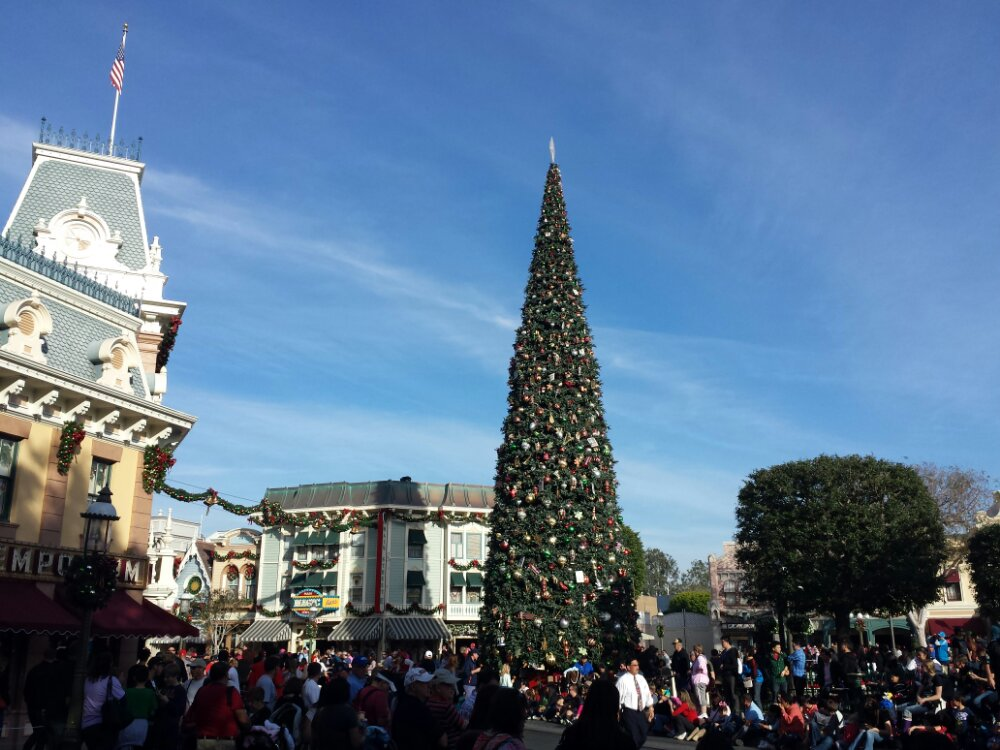 The Christmas tree in Town Square #Disneyland